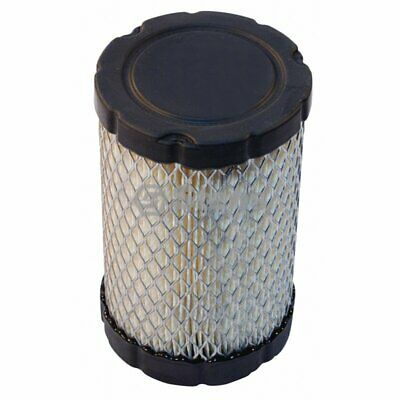 Air Filter / Briggs & Stratton EAA807