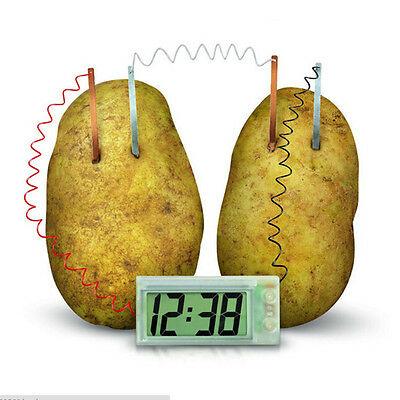 Potato Clock Novel Green Science Project Experiment Kit Lab