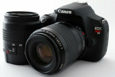 CANON EOS REBEL TMP mm [Exc+++] w/8GB SD