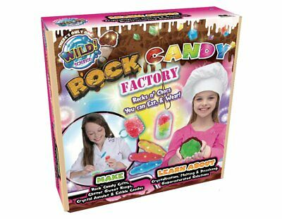 Brand new WILD! Science Edible Rock Candy Factory (D4)