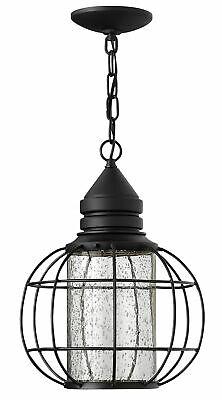 Hinkley Lighting  Light Dark Sky Outdoor Lantern