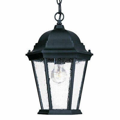 Acclaim Lighting  Richmond 1 Light Outdoor Pendant -