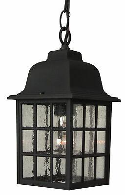 Craftmade Z271 Grid Cage 1 Light Rectangular Outdoor Pendant