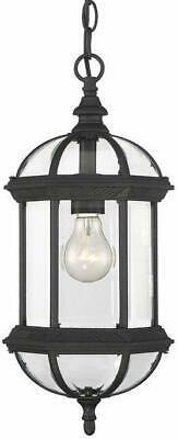 Savoy House  Light Outdoor Pendant - Black