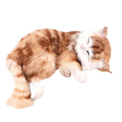 Creative Simulation Cat Cute Slipper Kitten Doll Toys Animal