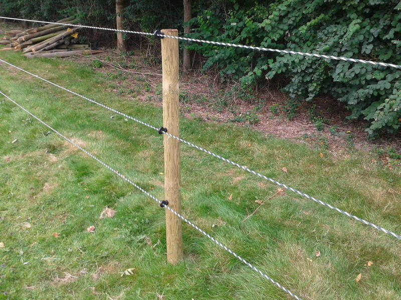 Horse & pony paddock fencing