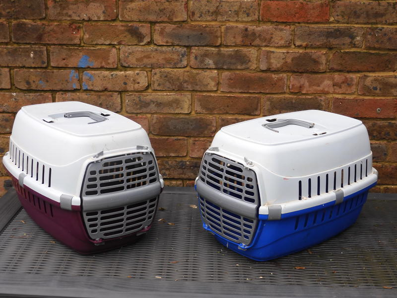Small Plastic Carrier for Cats, small Dogs and rabbits