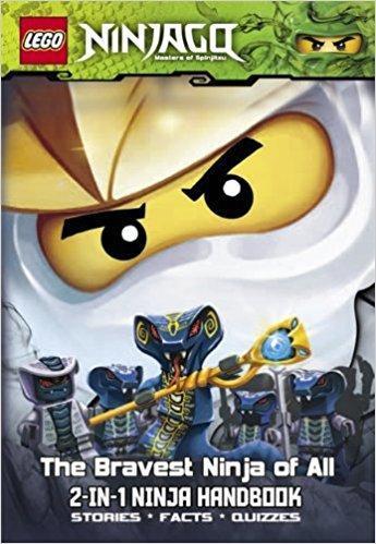 LEGO Ninjago 2 in 1 handbook