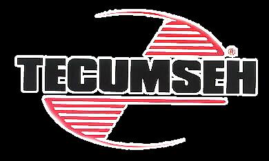 Tecumseh Fuel Tank