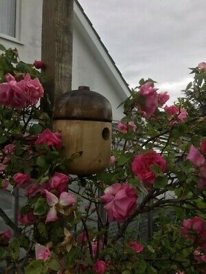 Unique Acorn style Wooden Bird nest boxes