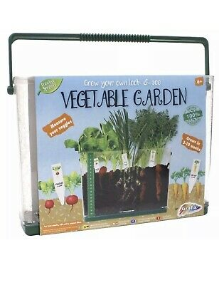 Childrens Grow Your Own Look & See Through Vegetable Garden