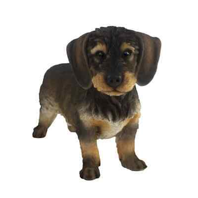 Esschert Design Wirehaired Dachshund 50x15x27.8cm Outdoor