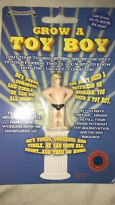 Grow Your Own Toyboy - Joke Gift and Stocking Filler Present