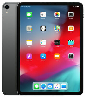 Apple iPad Pro 1st Gen. 256GB, Wi-Fi + 4G (Unlocked), 11 in