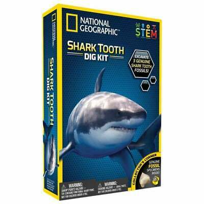 National Geographic Children's Shark Teeth Dig Kit