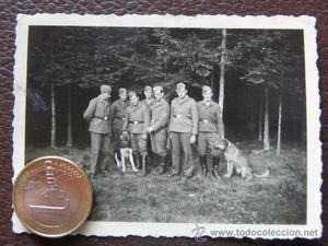 Grupo de militares alemanes en el bosque con 2 perros -