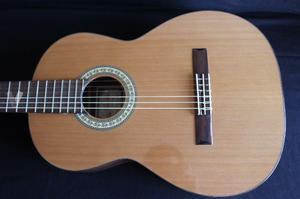 Guitarra prudencio saez mod. 20