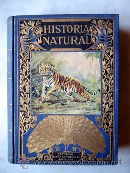HISTORIA NATURAL POPULAR, por CELSO ARÉVALO - SOPENA, .