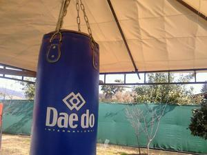 Saco de Boxeo + Guantes + Vendas