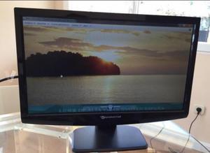 Monitor Ordenador LCD 19''