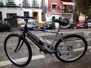 Bicicleta de montaña para adulto