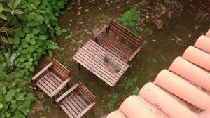 Juego de sillas, banco y mesa de jardín