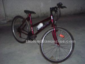 Bicicleta montaña paseo