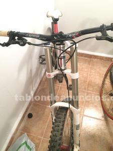 Vendo bicicleta de descenso en perfectas condiciones