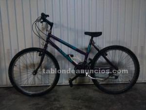 Bicicleta bh florida juvenil