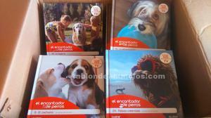 Vendo coleccion libros el encantador de perros
