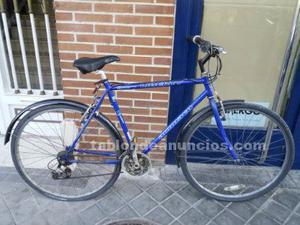 Bicicleta de montaña adulto