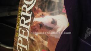 Vendo videos artero de peluqueria canina
