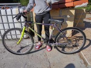 Bicicleta de montaña strong