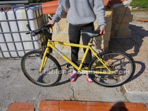 Bicicleta montaña lookup