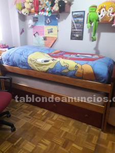 Dormitorio de pino juvenil