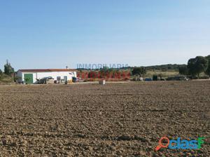 Finca agrícola de regadío para cultivos ecológicos