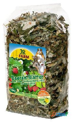 Jr Farm Hojas De Baya 100 GR