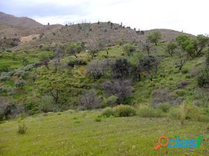 Parcela rural no urbanizable en venta en Entrerríos, Mijas.