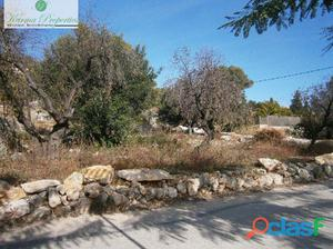 Parcela urbana en Alcalali de 874 m2 con excelente ubicacion