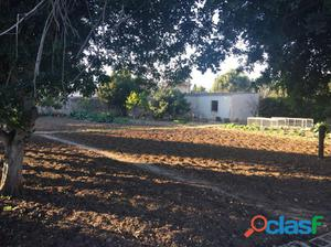 Se vende casa con terreno en la zona de Coll d´en Rabassa