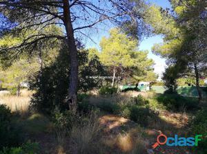 Se venden 4 parcelas en Denia (Alicante) ubicadas en las Las
