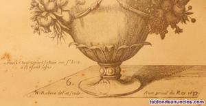 Acuarela del siglo xvii - nicolas robert ()