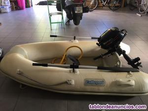 Embarcacion neumatica con motor