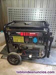 Generador eléctrico w