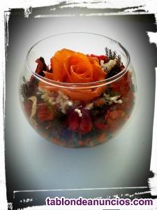 Vaso de cristal con rosa
