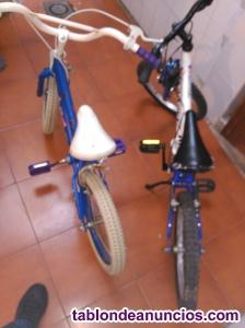Bicicleta par de niña y niño