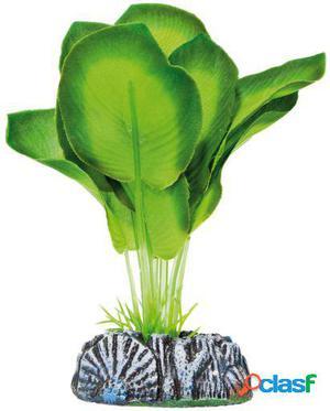 Aquatic Plants Planta de Seda Aglaonema 94 GR