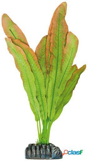 Aquatic Plants Planta de Seda Microsorium 94 GR