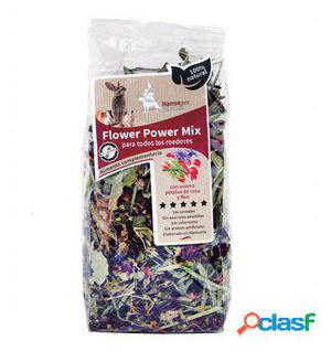 Axis-Biozoo Snack para Roedores Flower Power Mix 100 GR
