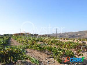 Finca rustica en Arico